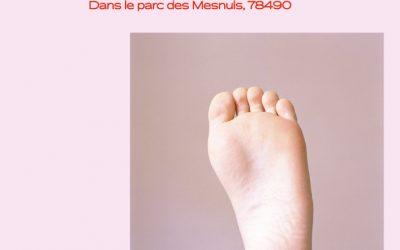 Les Mesnographies